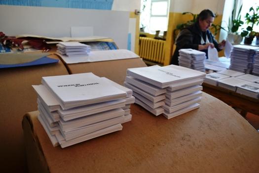 read Wahler und Gewahlte: Eine Untersuchung der Bundestagswahlen